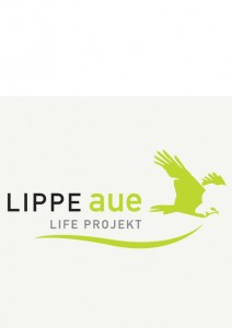 Logo_lippe_aue