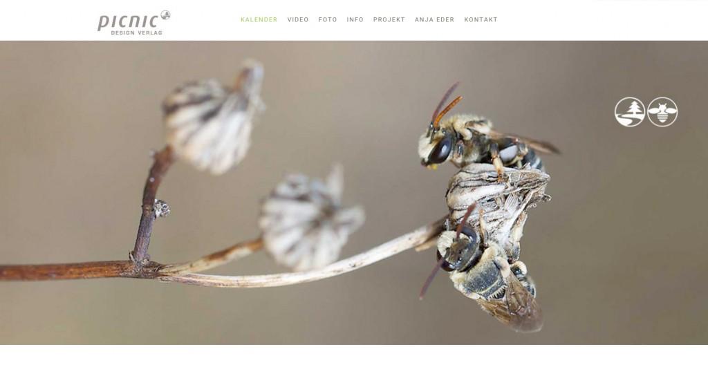 eildbienen_webseite_picnic